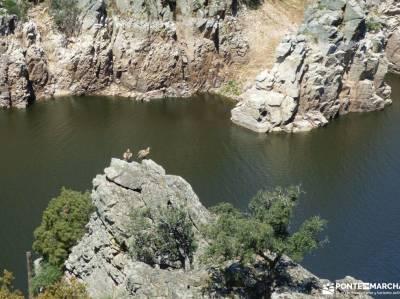 Monfrague-Trujillo;navacerrada pueblo laguna de ruidera nacimiento del urederra ribera sacra viajes